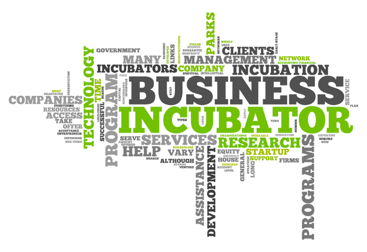 What is the value of your incubator